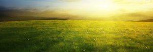 RG SRL - Energia pulita, rispetto per l'ambiente