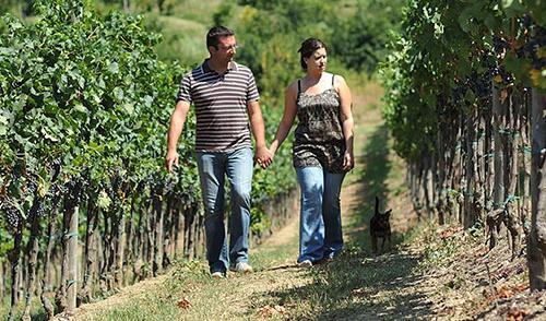 Vigna Ròda Vini dei Colli Euganei - Elena e Gianni Strazzacappa