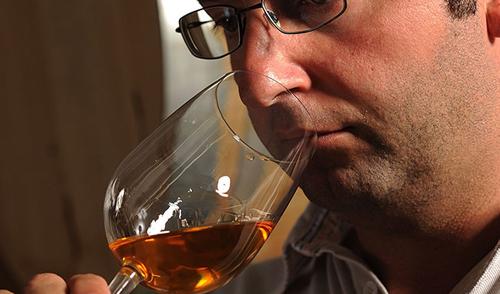 Vigna Ròda Vini dei Colli Euganei - Gianni Strazzacappa